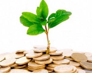 окружающей среды, экологические проекты, природоохрана, охрана окружающей среды, окружающая среда