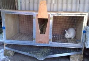 Кроличья клетка с двумя отсеками