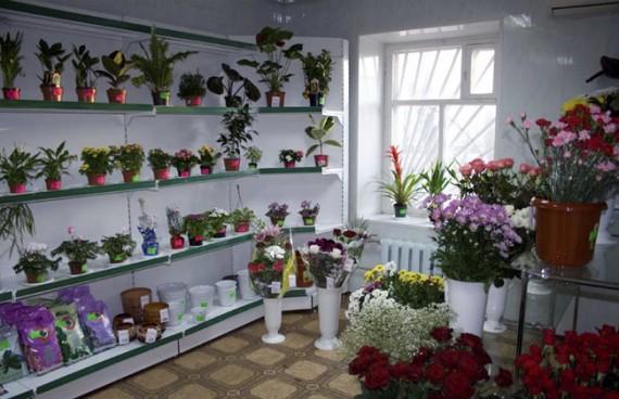Цветочный магазин: витрина