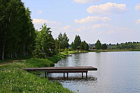 мостик на пруду