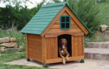Изготовление будок для собак – неплохая идея начать собственный бизнес