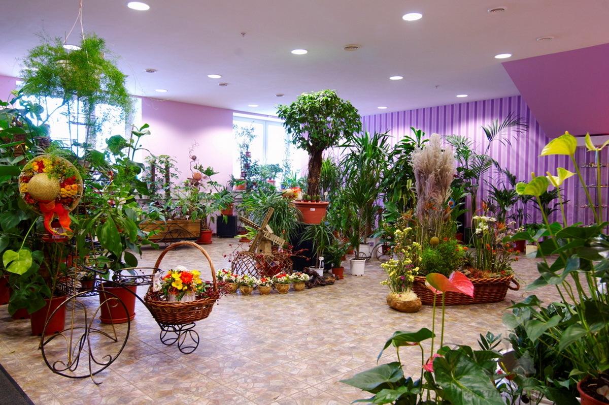 Цветочный бизнес, или как не уколоться о шипы магазина мечты