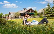 Что такое сельский туризм и агротуризм
