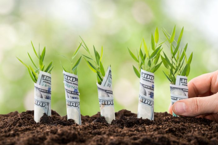 13 прибыльных идей летнего бизнеса