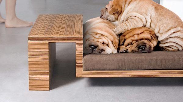 Мебель и аксессуары для домашних животных