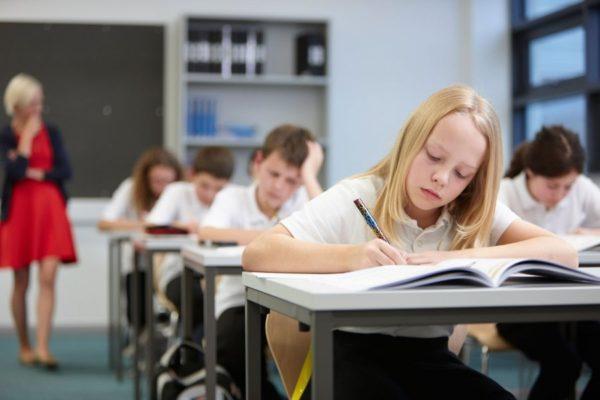 Будет ли образование в российских школах платным?