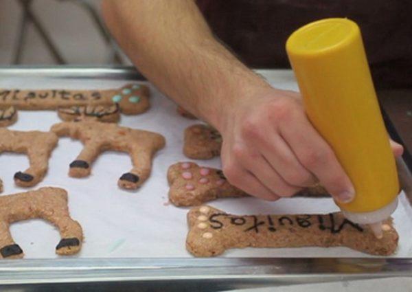 Пекарня для собак и кошек