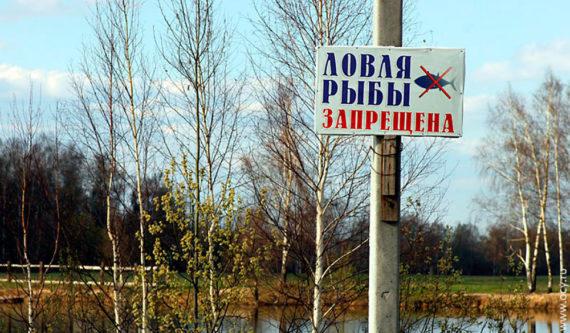 Какую рыбу нельзя ловить в московской области в 2021 году