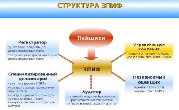 struktura zpif